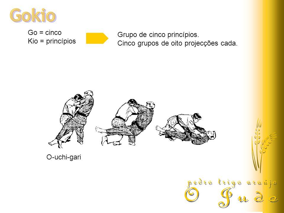 Gokio pedro trigo araújo O Judo Go = cinco Grupo de cinco princípios.
