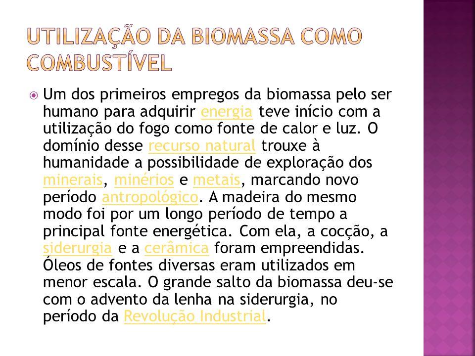 Utilização da biomassa como combustível