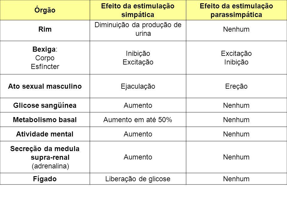 Efeito da estimulação simpática Efeito da estimulação parassimpática