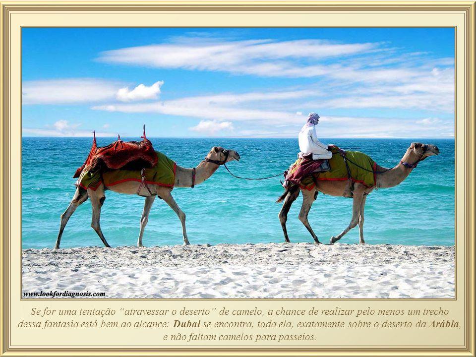 Se for uma tentação atravessar o deserto de camelo, a chance de realizar pelo menos um trecho dessa fantasia está bem ao alcance: Dubai se encontra, toda ela, exatamente sobre o deserto da Arábia, e não faltam camelos para passeios.