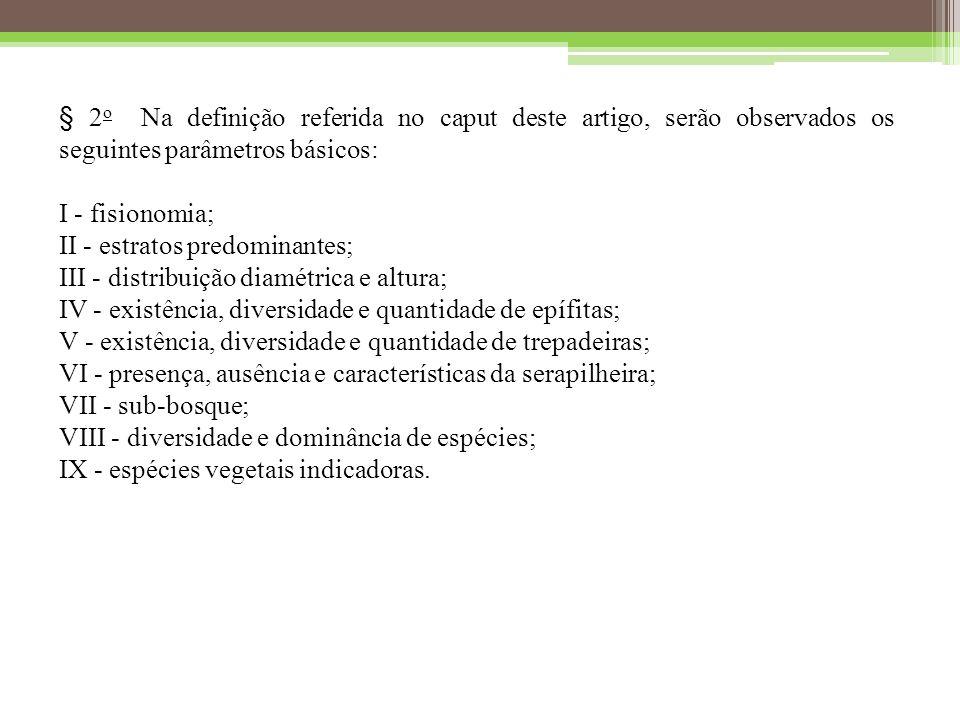 § 2o Na definição referida no caput deste artigo, serão observados os seguintes parâmetros básicos: