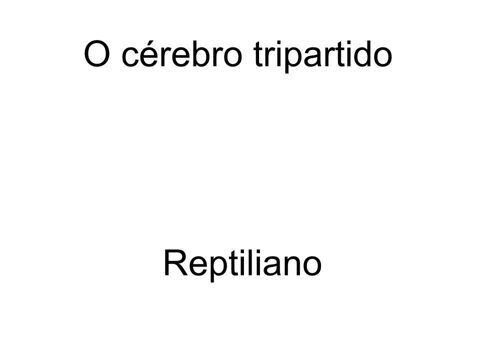 O cérebro tripartido Reptiliano