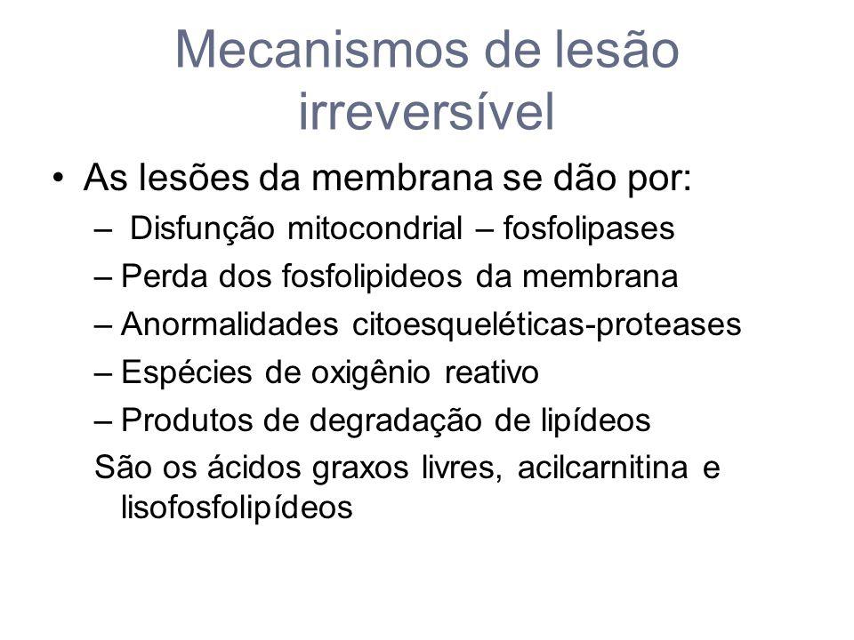 Mecanismos de lesão irreversível