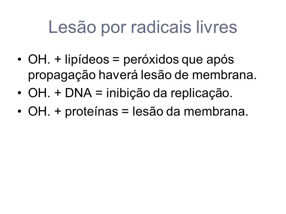 Lesão por radicais livres
