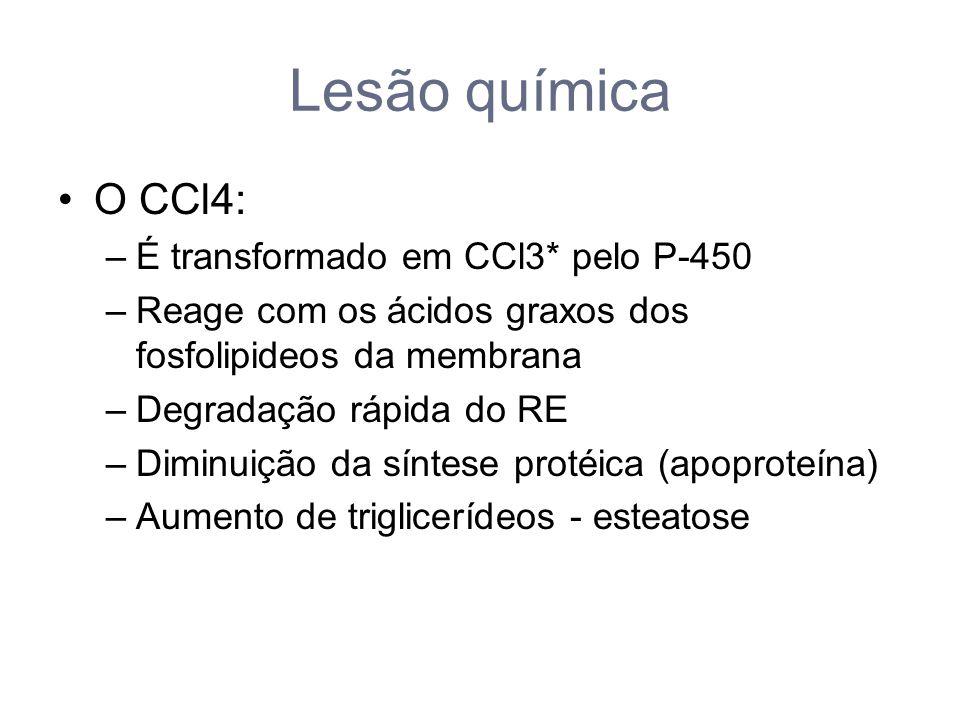 Lesão química O CCl4: É transformado em CCl3* pelo P-450