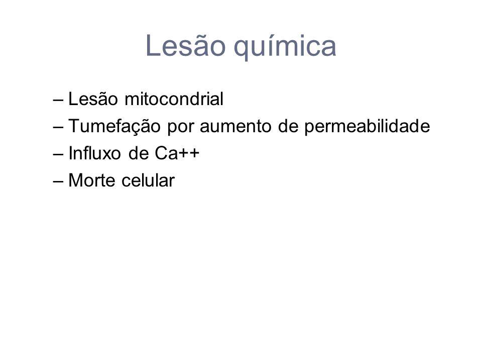 Lesão química Lesão mitocondrial