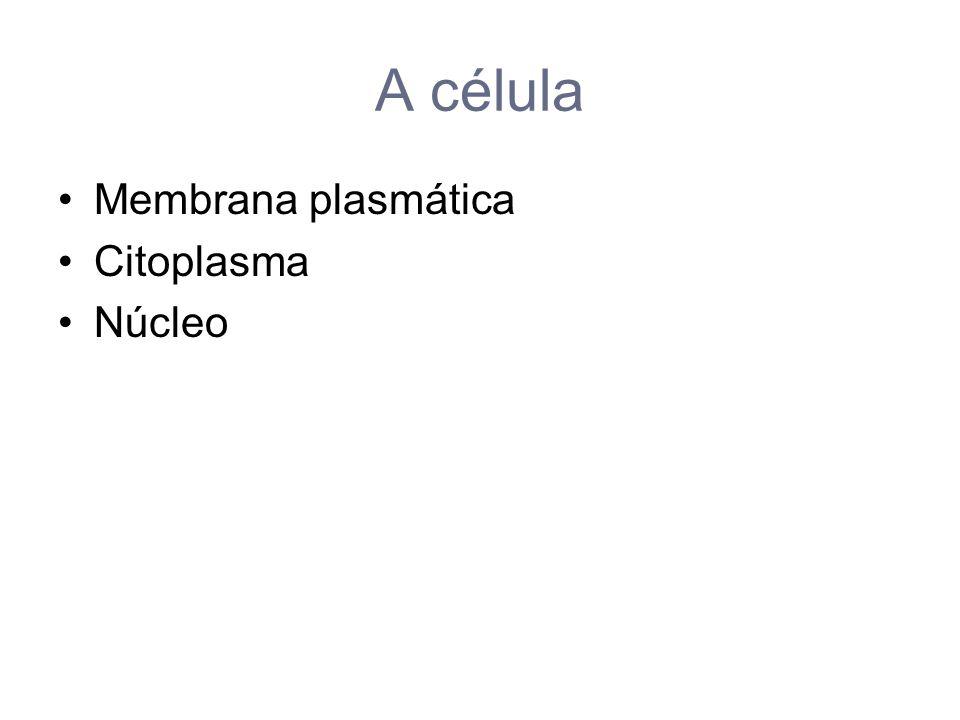 A célula Membrana plasmática Citoplasma Núcleo