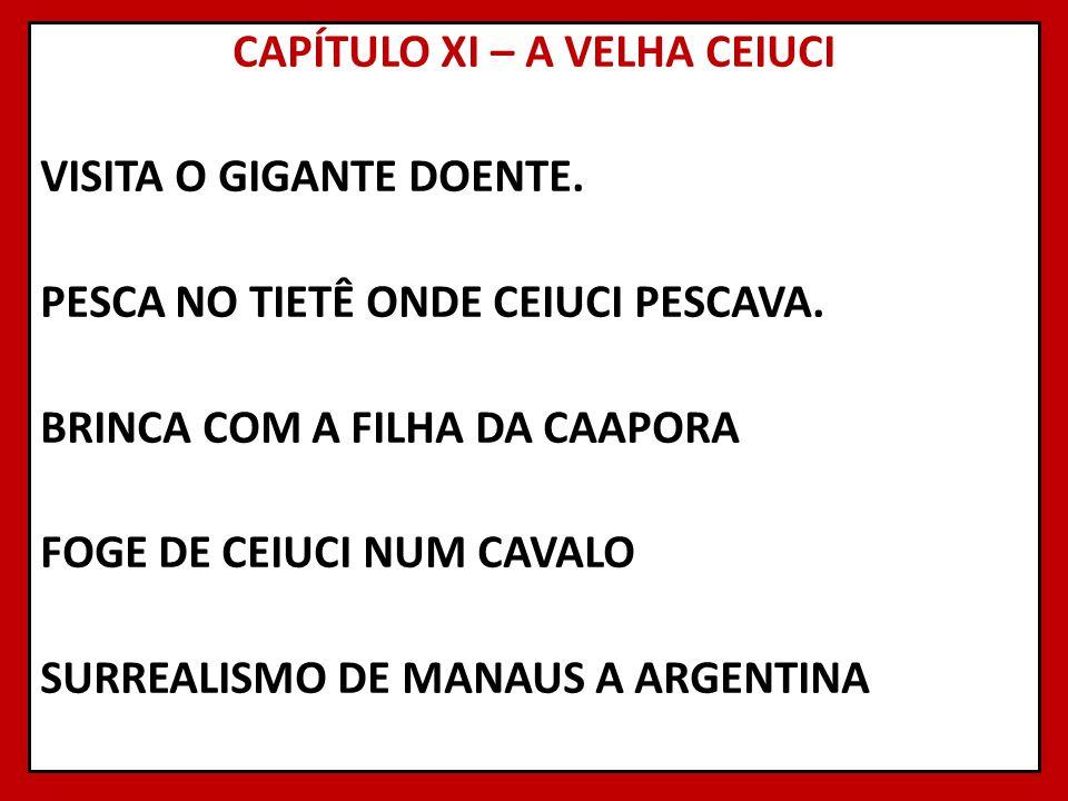 CAPÍTULO XI – A VELHA CEIUCI VISITA O GIGANTE DOENTE