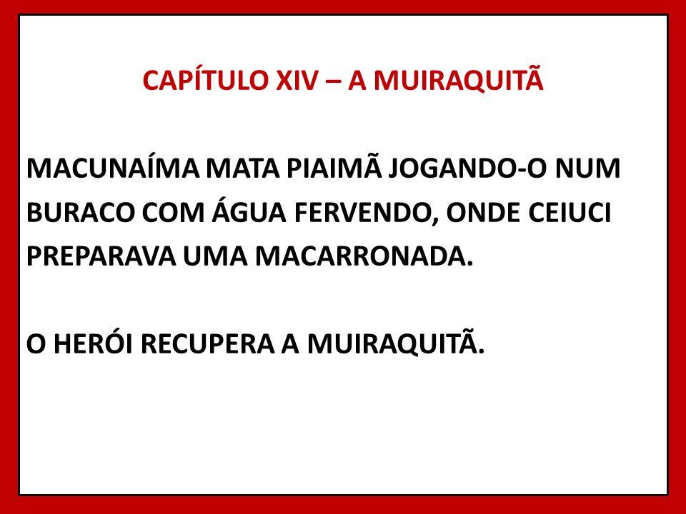 CAPÍTULO XIV – A MUIRAQUITÃ MACUNAÍMA MATA PIAIMÃ JOGANDO-O NUM BURACO COM ÁGUA FERVENDO, ONDE CEIUCI PREPARAVA UMA MACARRONADA.