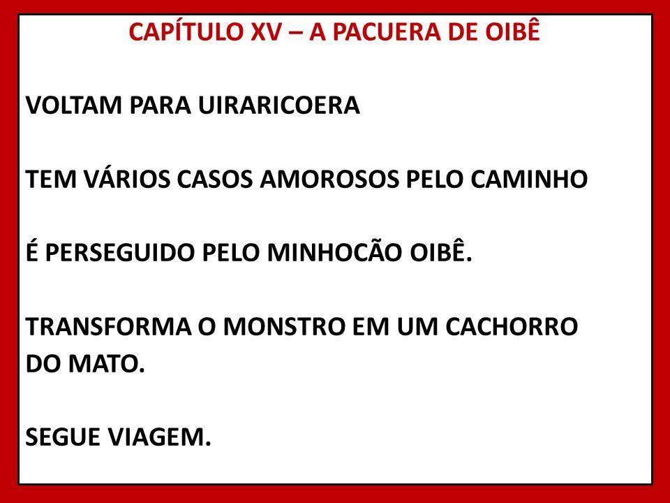 CAPÍTULO XV – A PACUERA DE OIBÊ VOLTAM PARA UIRARICOERA TEM VÁRIOS CASOS AMOROSOS PELO CAMINHO É PERSEGUIDO PELO MINHOCÃO OIBÊ.