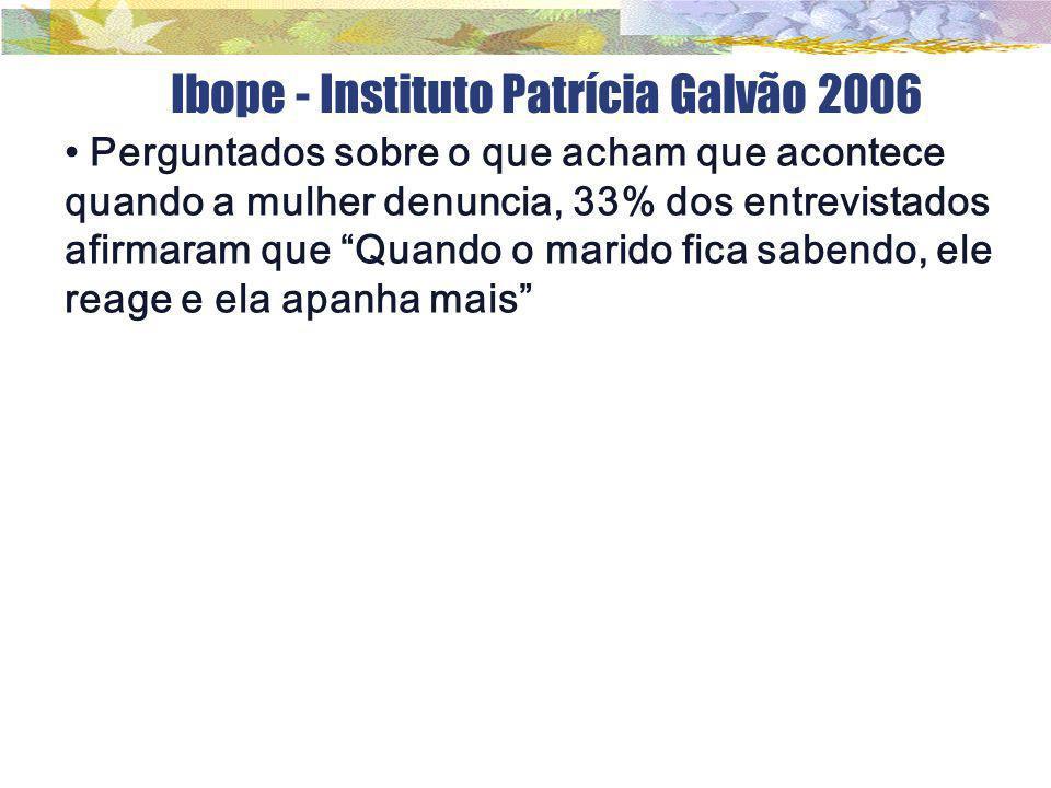 Ibope - Instituto Patrícia Galvão 2006