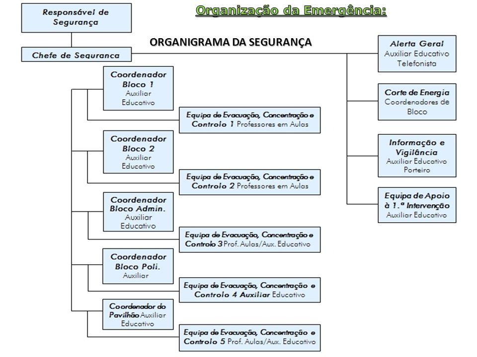 Organização da Emergência: