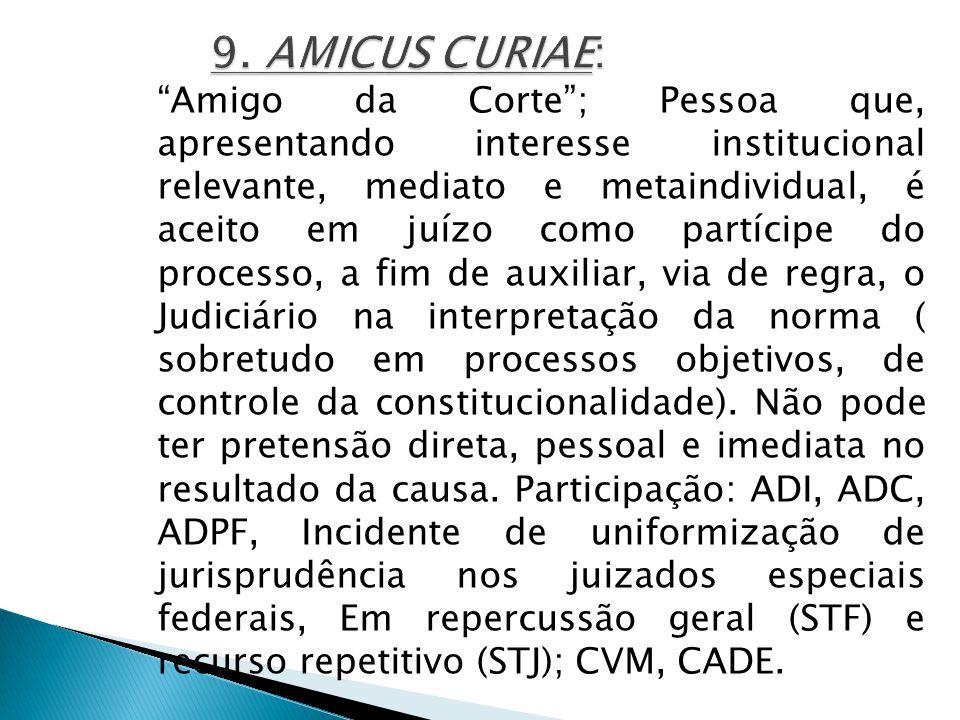 9. AMICUS CURIAE: