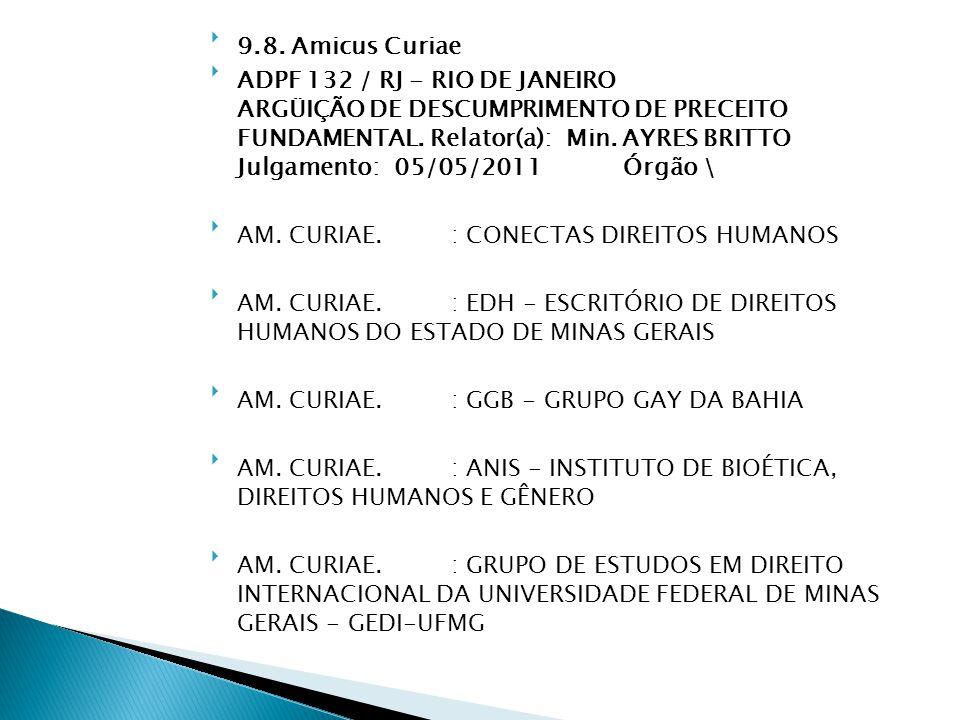 9.8. Amicus Curiae