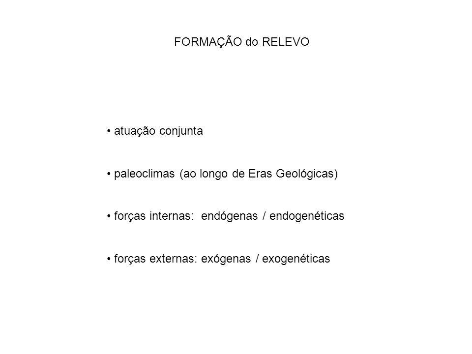 FORMAÇÃO do RELEVO atuação conjunta. paleoclimas (ao longo de Eras Geológicas) forças internas: endógenas / endogenéticas.
