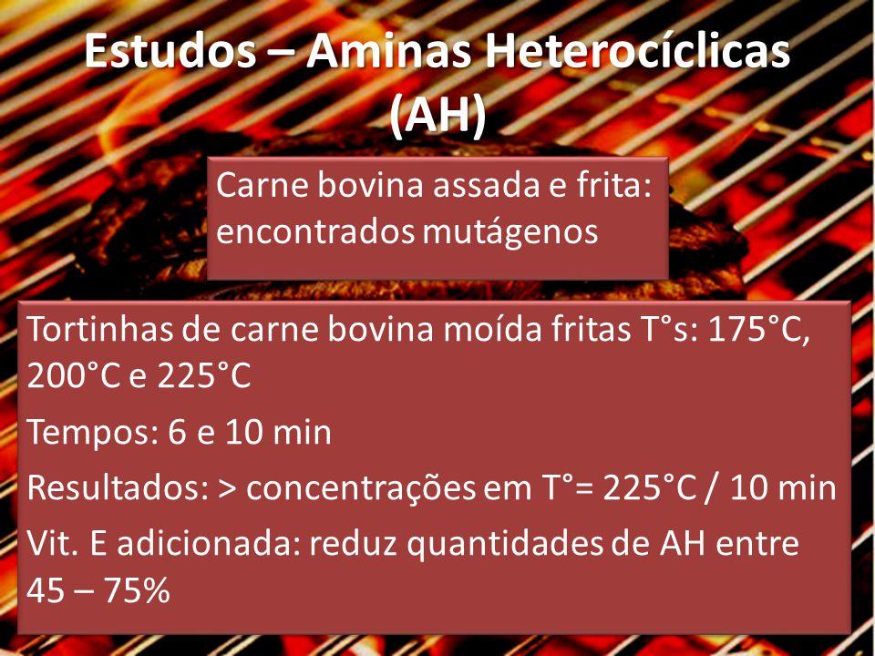 Estudos – Aminas Heterocíclicas (AH)