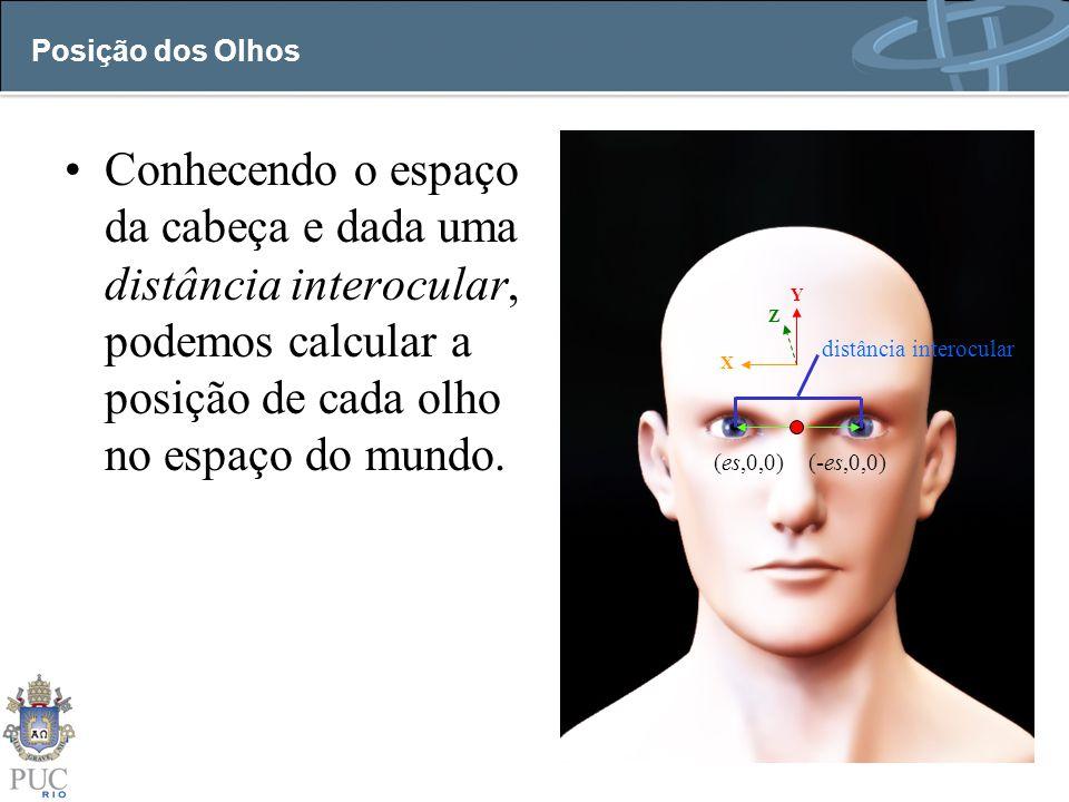 Posição dos Olhos Conhecendo o espaço da cabeça e dada uma distância interocular, podemos calcular a posição de cada olho no espaço do mundo.