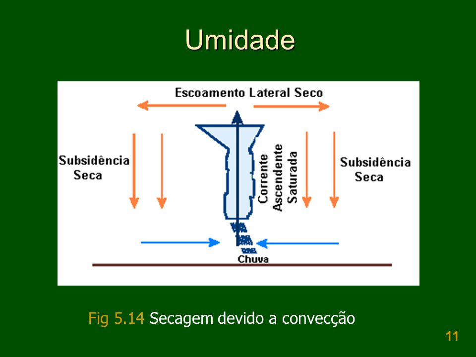 Umidade Fig 5.14 Secagem devido a convecção
