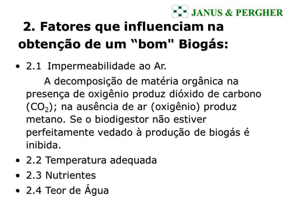 2. Fatores que influenciam na obtenção de um bom Biogás: