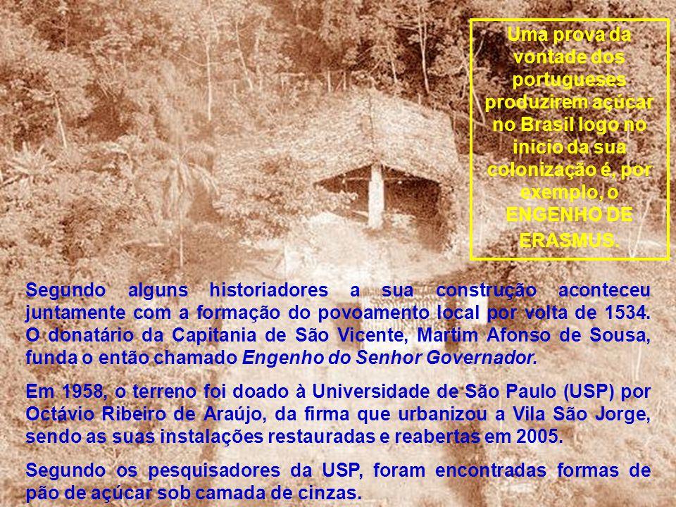 Uma prova da vontade dos portugueses produzirem açúcar no Brasil logo no inicio da sua colonização é, por exemplo, o ENGENHO DE ERASMUS.