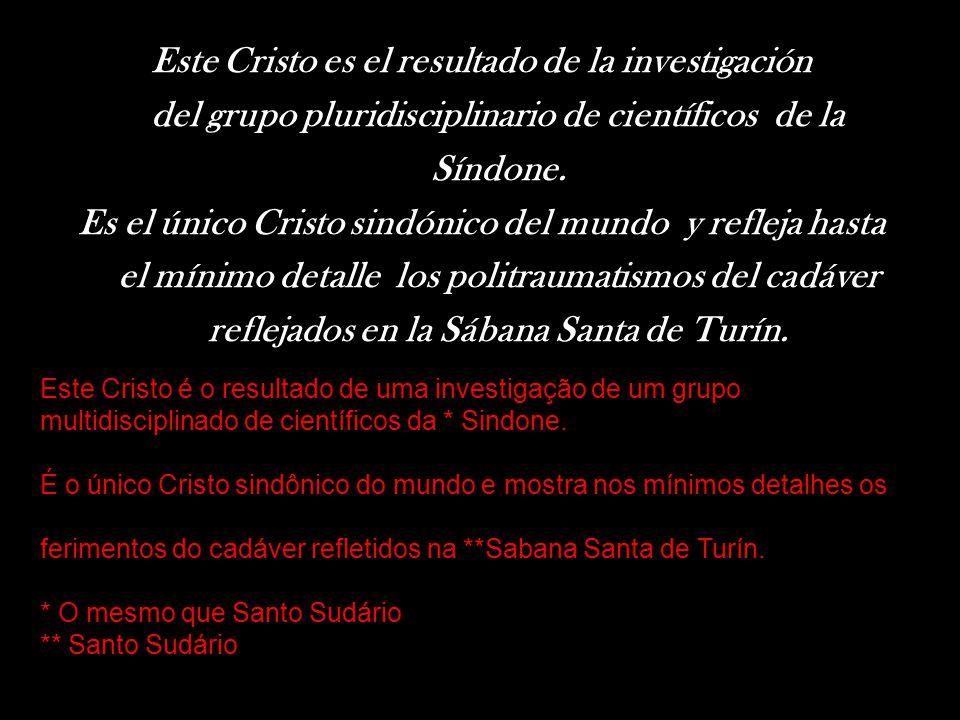 Este Cristo es el resultado de la investigación del grupo pluridisciplinario de científicos de la Síndone.