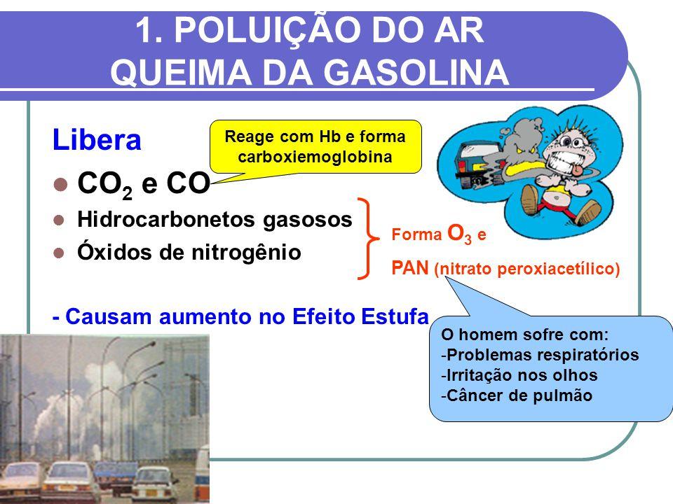 1. POLUIÇÃO DO AR QUEIMA DA GASOLINA