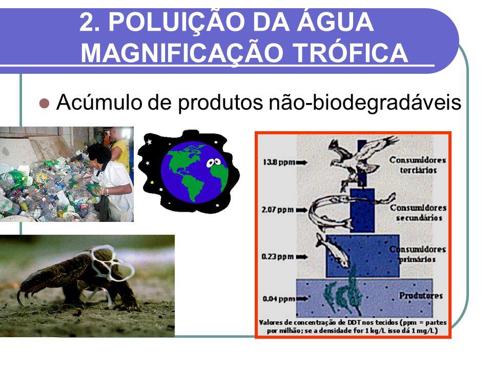 2. POLUIÇÃO DA ÁGUA MAGNIFICAÇÃO TRÓFICA