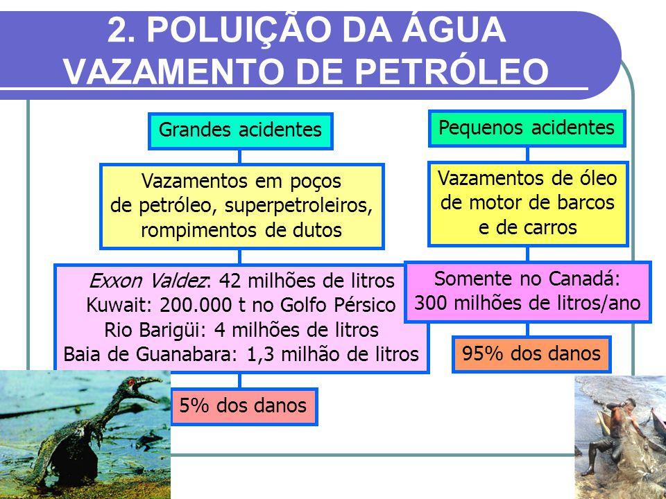 2. POLUIÇÃO DA ÁGUA VAZAMENTO DE PETRÓLEO