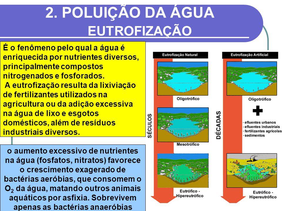 2. POLUIÇÃO DA ÁGUA EUTROFIZAÇÃO