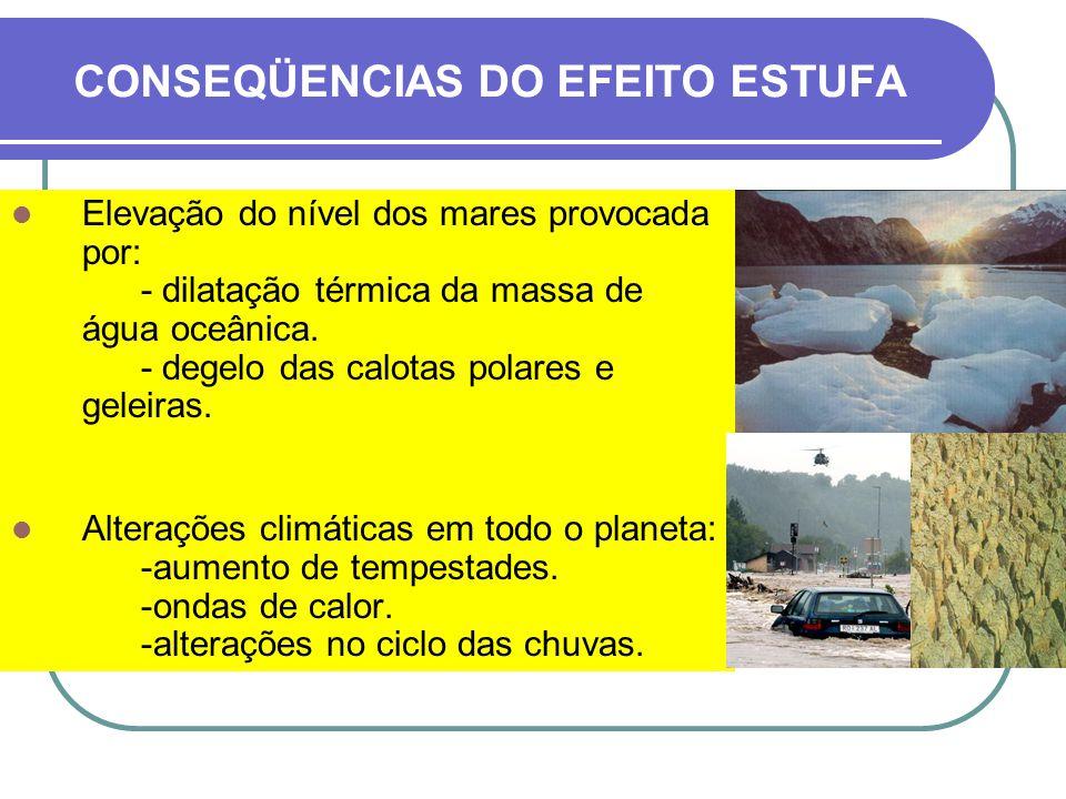 CONSEQÜENCIAS DO EFEITO ESTUFA