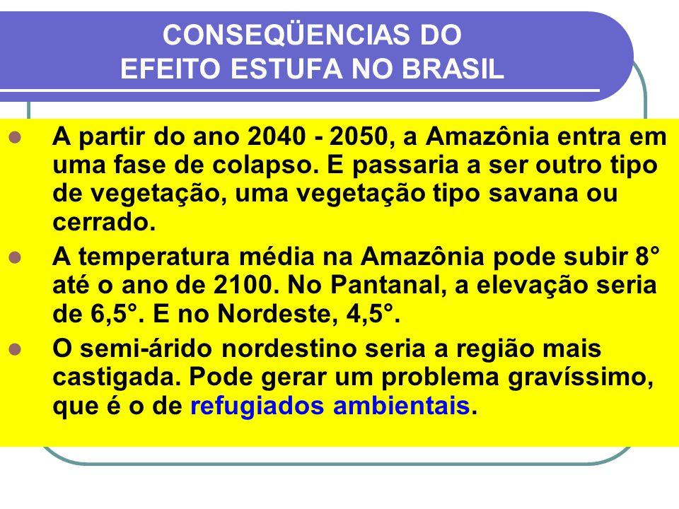 CONSEQÜENCIAS DO EFEITO ESTUFA NO BRASIL