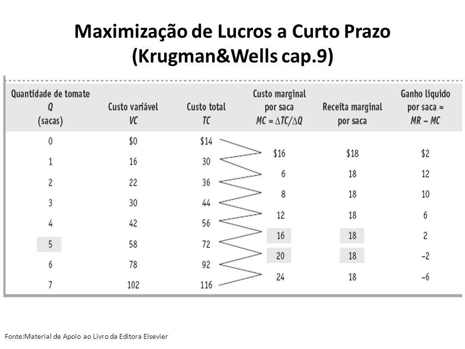 Maximização de Lucros a Curto Prazo (Krugman&Wells cap.9)