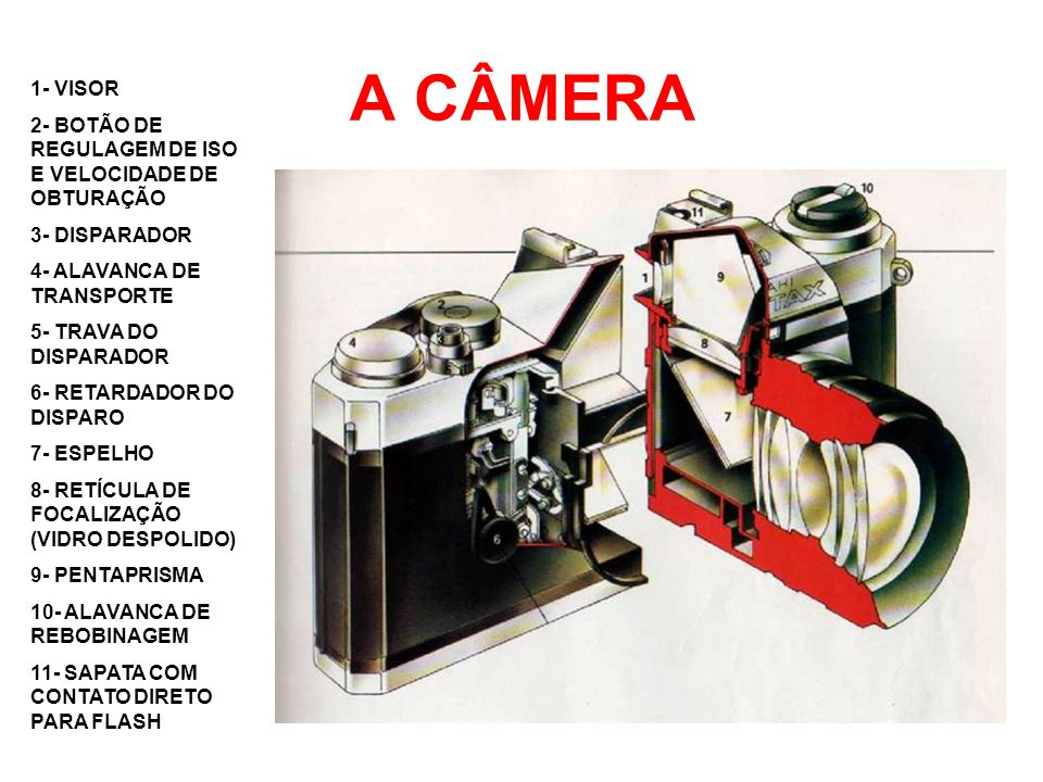 A CÂMERA 1- VISOR. 2- BOTÃO DE REGULAGEM DE ISO E VELOCIDADE DE OBTURAÇÃO. 3- DISPARADOR. 4- ALAVANCA DE TRANSPORTE.