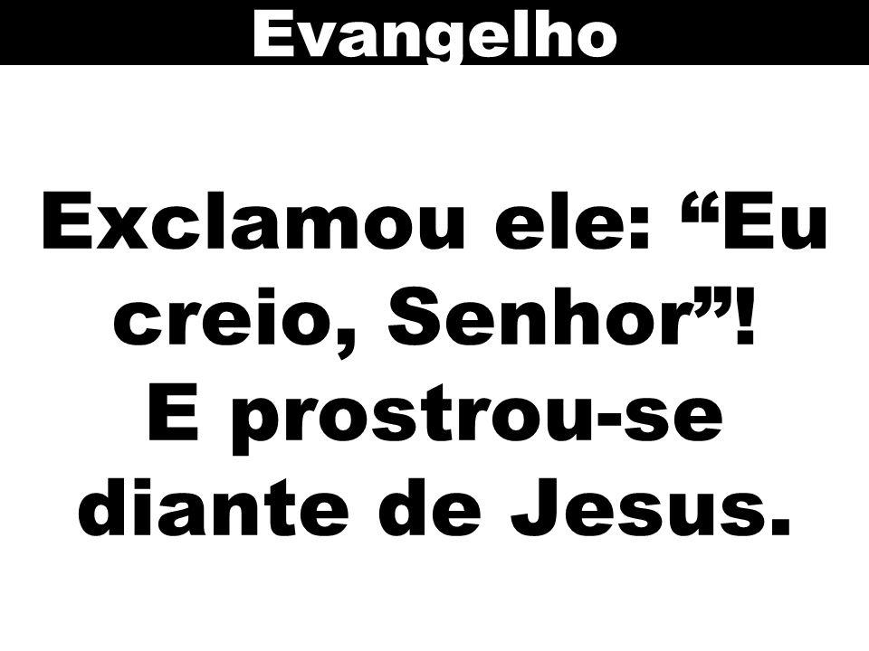 Exclamou ele: Eu creio, Senhor ! E prostrou-se diante de Jesus.