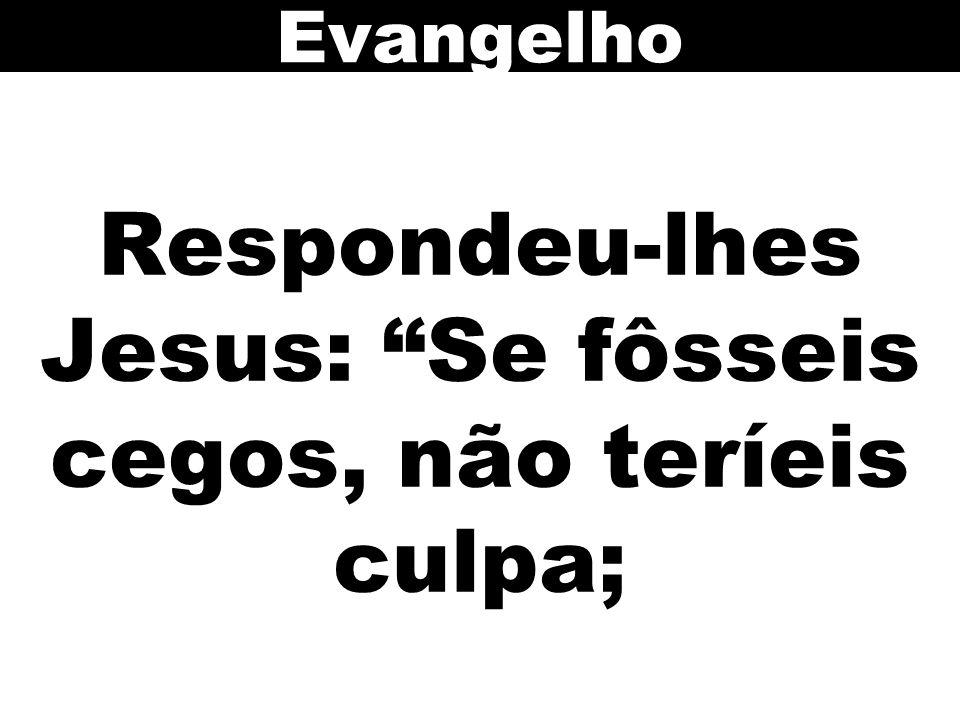 Respondeu-lhes Jesus: Se fôsseis cegos, não teríeis culpa;