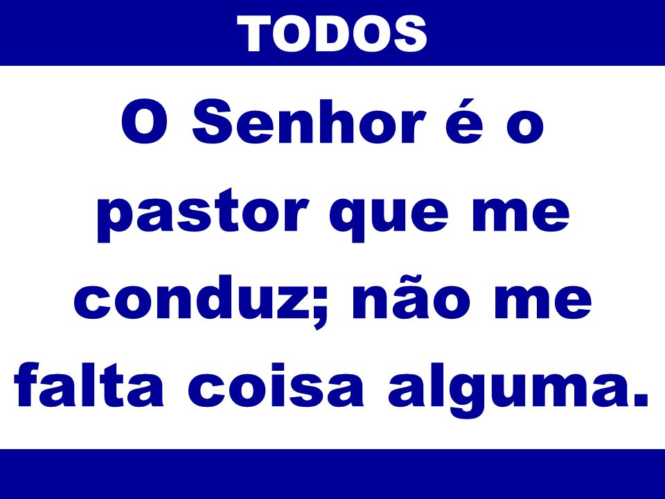 O Senhor é o pastor que me conduz; não me falta coisa alguma.