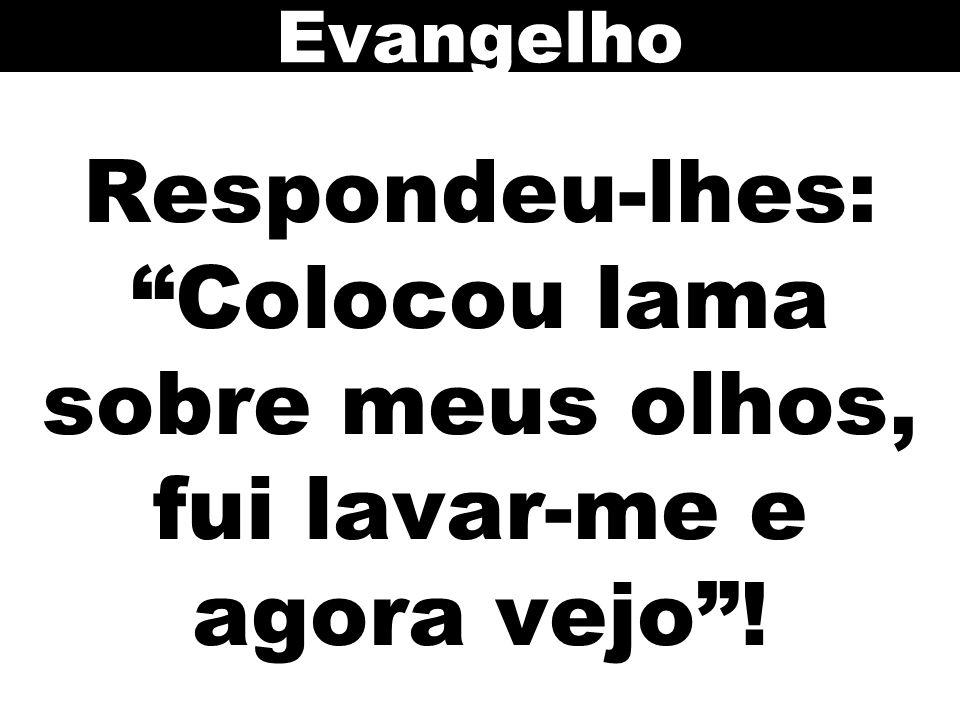 Evangelho Respondeu-lhes: Colocou lama sobre meus olhos, fui lavar-me e agora vejo ! 94