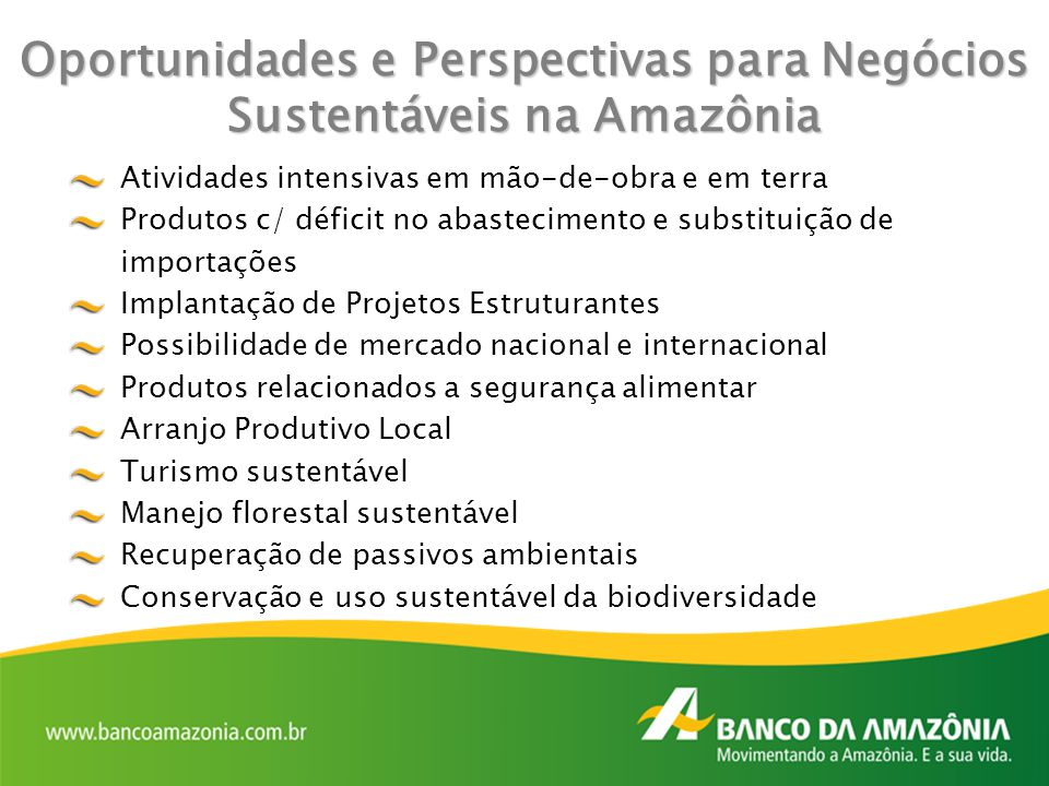 Oportunidades e Perspectivas para Negócios Sustentáveis na Amazônia