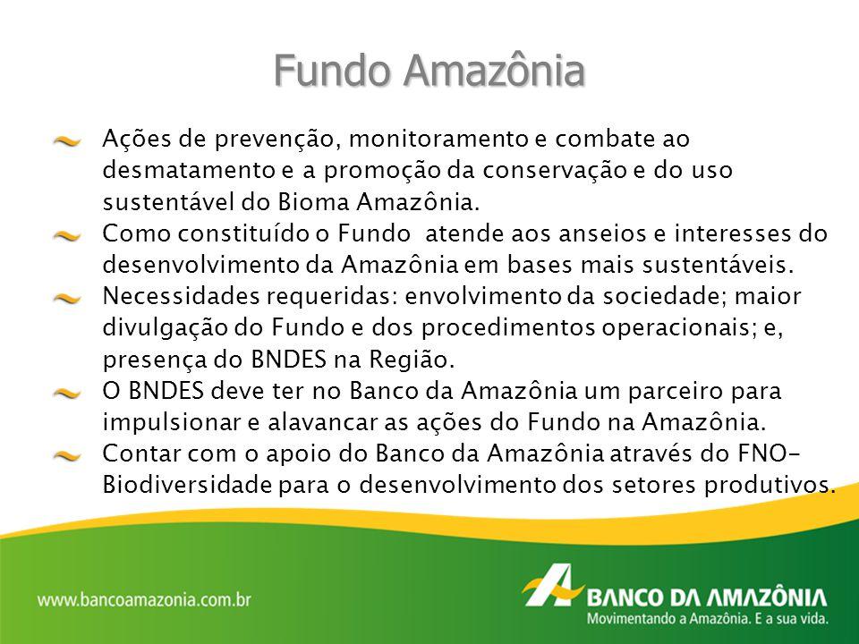 Fundo Amazônia Ações de prevenção, monitoramento e combate ao desmatamento e a promoção da conservação e do uso sustentável do Bioma Amazônia.