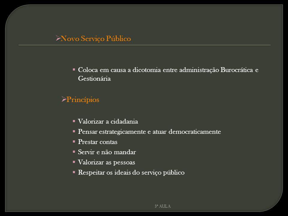 Novo Serviço Público Princípios