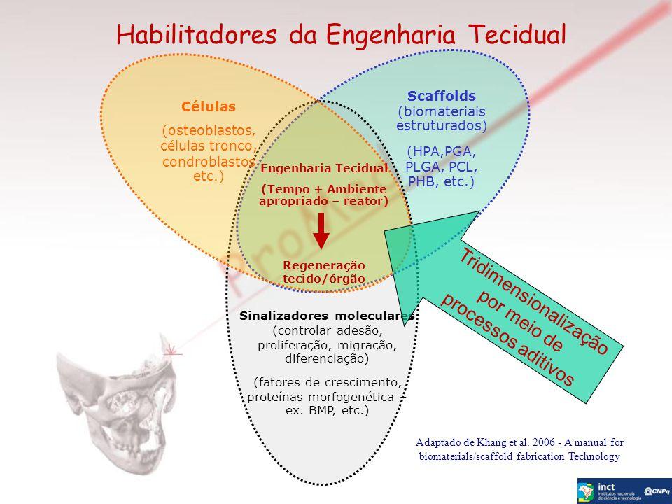 (Tempo + Ambiente apropriado – reator) Regeneração tecido/órgão