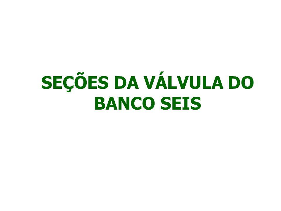 SEÇÕES DA VÁLVULA DO BANCO SEIS