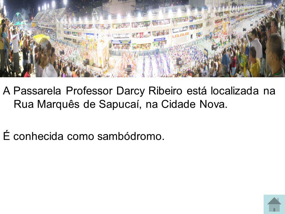 A Passarela Professor Darcy Ribeiro está localizada na Rua Marquês de Sapucaí, na Cidade Nova.