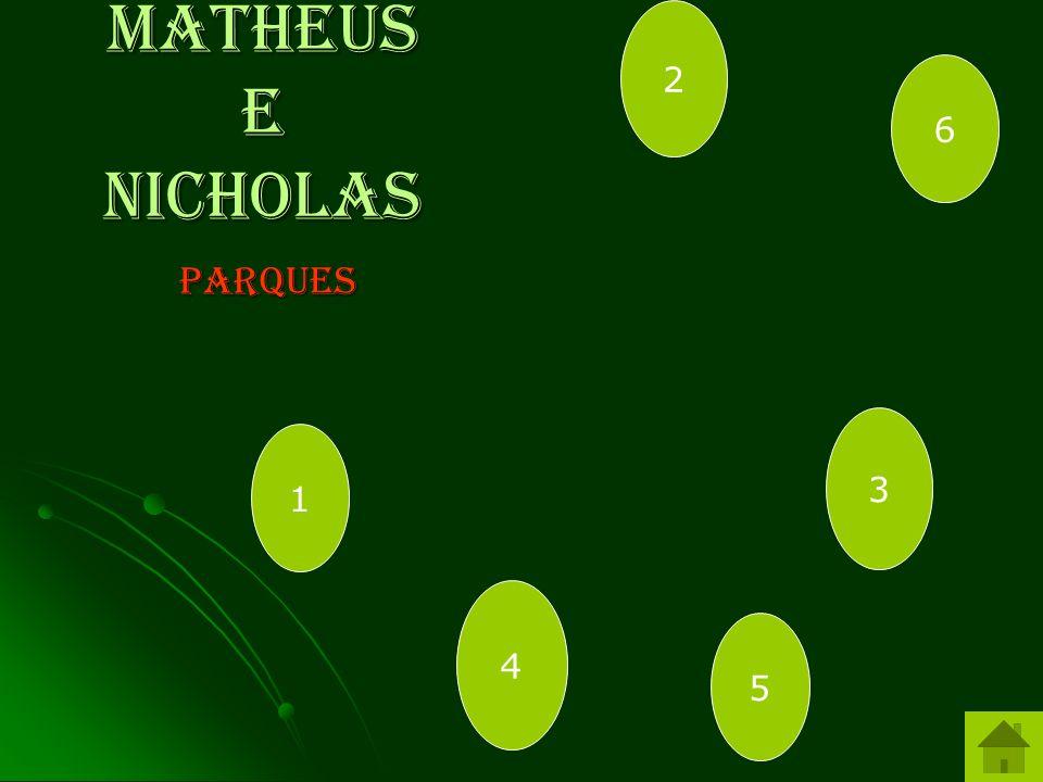 2 Matheus e Nicholas 6 parques 3 1 4 5