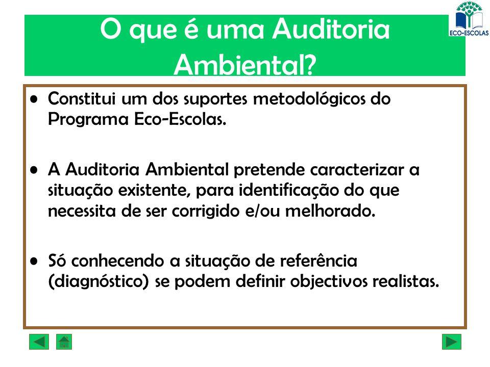 O que é uma Auditoria Ambiental