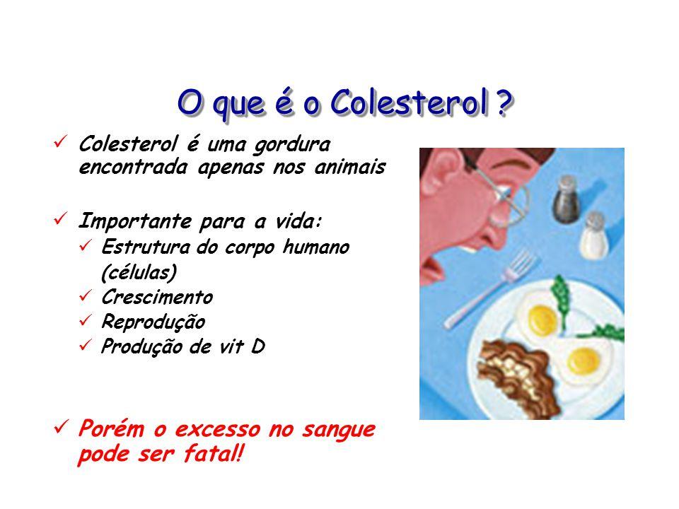 O que é o Colesterol Porém o excesso no sangue pode ser fatal!