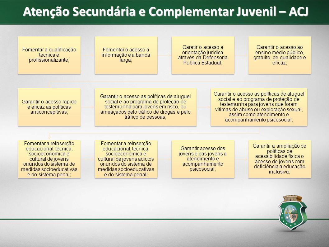 Atenção Secundária e Complementar Juvenil – ACJ