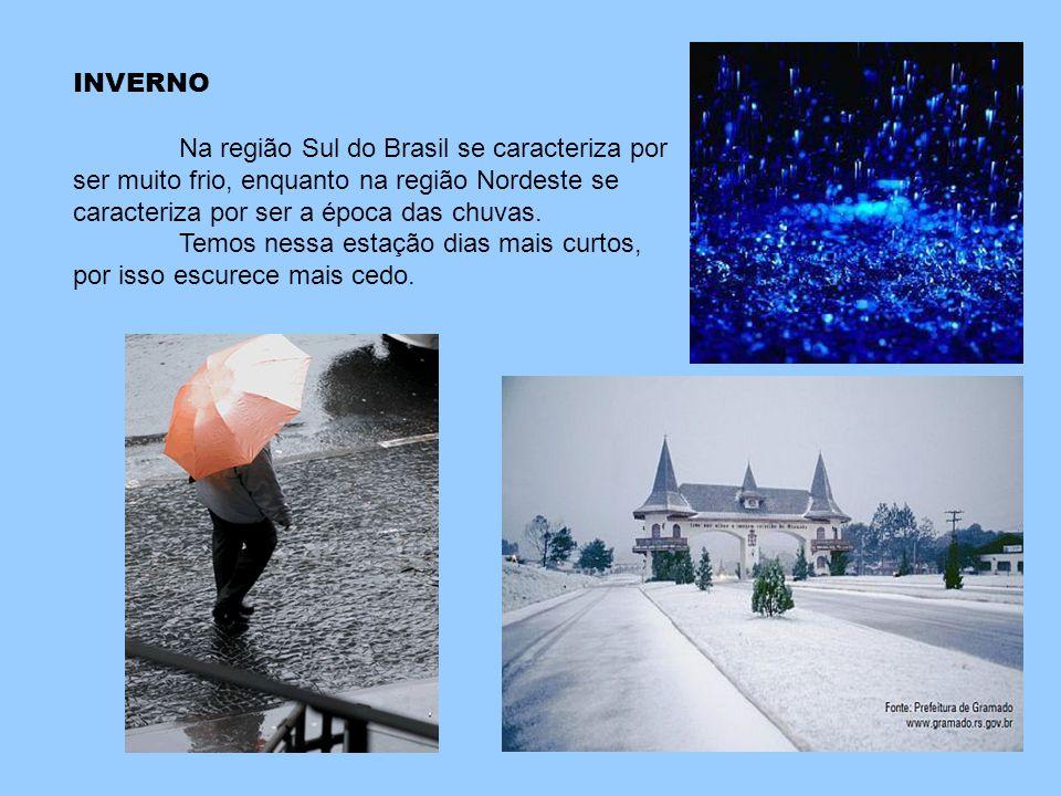 INVERNO Na região Sul do Brasil se caracteriza por ser muito frio, enquanto na região Nordeste se caracteriza por ser a época das chuvas.
