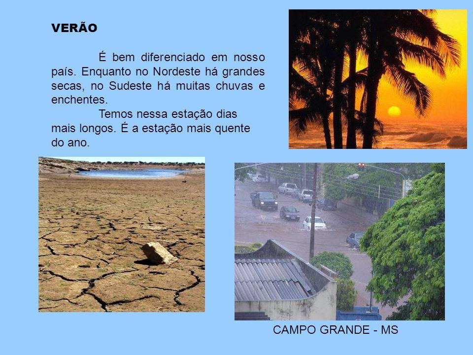 VERÃO É bem diferenciado em nosso país. Enquanto no Nordeste há grandes secas, no Sudeste há muitas chuvas e enchentes.
