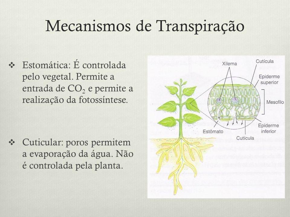 Mecanismos de Transpiração